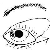 abfallendes-Auge