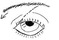 auseinanderstehend-Auge
