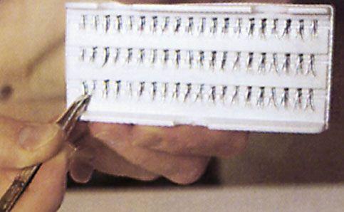 einzelne Wimpern kleben 1